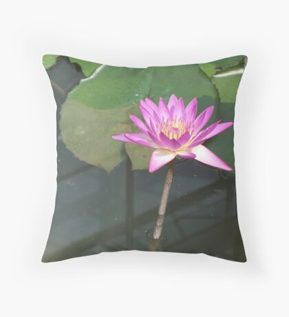 Beautiful Water Lilly Throw Pillow
