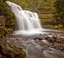 Liffey Falls Revisited by tinnieopener