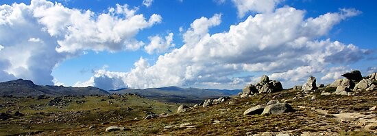 Kosciusko Vista by Harry Oldmeadow