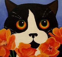 Poppy by Anni Morris