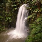 Beauchamp Falls - Otways by Hans Kawitzki