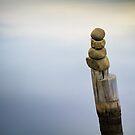 Zen Post by Tony Lomas