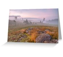 August morning Greeting Card