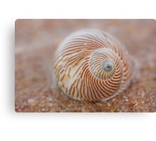 washed up.... Canvas Print