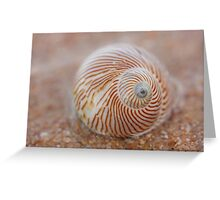 washed up.... Greeting Card
