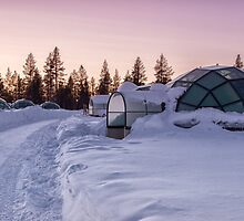 Home Is a Glass Igloo by Kristin Repsher