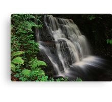 Tigers Clough Waterfall Canvas Print