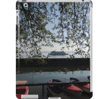 Gliding through the Water iPad Case/Skin