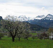 Switzerland by Marie Breton