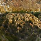 Mineral Walls - Queenstown, Tasmania, Australia by pocketdelight