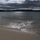 Safety Cove Beach - Tasmania, Australia by pocketdelight