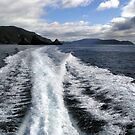 Wake - Tasman Island Trip, Tasmania, Australia by pocketdelight