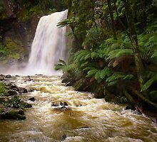 Hopetoun Falls - Otways by Hans Kawitzki