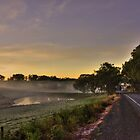 Road to Lobethal, South Australia by DaveZ