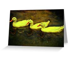 """""""Three Quaint Quackers ...."""" Greeting Card"""