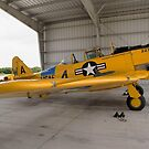 North American SNJ-6 Texan by Mark Kopczewski