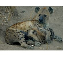 Spotted Hyena with Pup Photographic Print