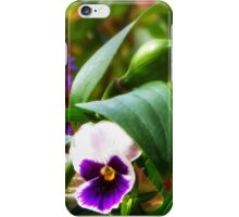 Potted Pansies iPhone Case/Skin