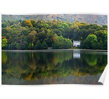 Autumn Woodland - Grasmere, Cumbria, England Poster