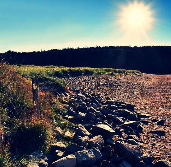 Sand Beach Sunlight by Lyana Votey