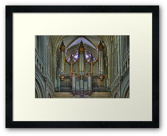 Notre-Dame de Bayeux -The Big Organ Cavaillé-Coll by paolo1955