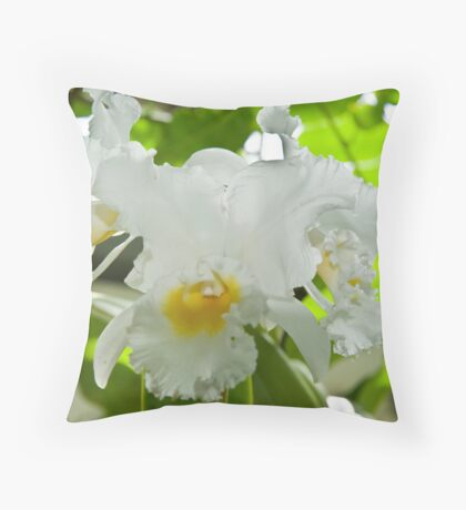 Washington DC Flowers  Throw Pillow