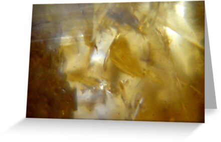 Citrine crystal. by Livvy Young