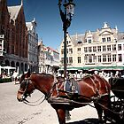 Your Carraige Awaits in Brugge by SBJC
