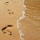 Footsteps in the Sand by SBJC