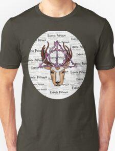 ~Expecto Patronum~ Harry Potter x 2 T-Shirt