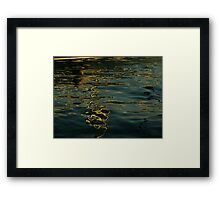 Sun ink drawing on water paper Framed Print