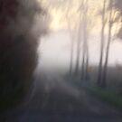 Hazy morning by takemeawaycn