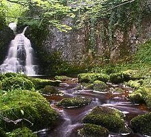 Wharfedale Waterfall by Mat Robinson