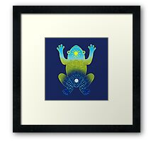 Day and Night Frog Framed Print