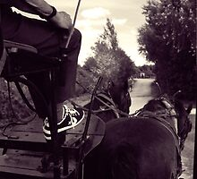 Horse - Shoes by TotoPhotos
