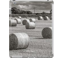 Hay Barrels in a Field iPad Case/Skin