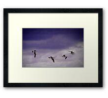 Fighter Squadron Framed Print