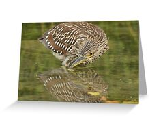 Timid reflection Greeting Card