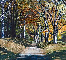 'Autumn Trail ( Bass Lake, Blowing Rock, NC)' by Jerry Kirk