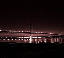 Forth Road Bridge by Robert Wilson