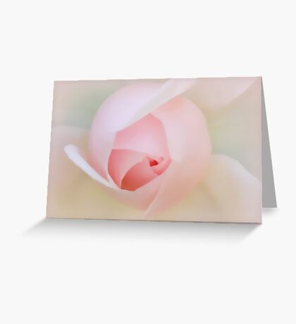 Palest of Pink Greeting Card
