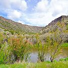 Afternoon on the Rio Grande by Harry Oldmeadow