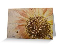 Summer Sunflowers Postcard Greeting Card