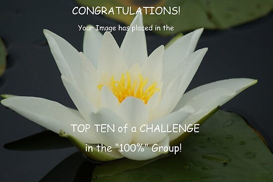For the 100% Group Top Ten Challenge Banner by Sandra Cockayne