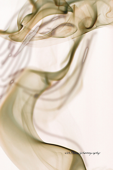 Incendiary Elegance © Vicki Ferrari Photography by Vicki Ferrari