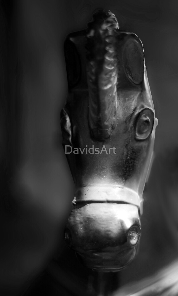 The Rocking Horse BW by DavidsArt