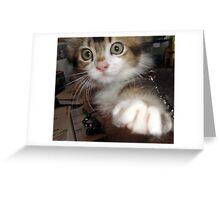 Gimme That!!! Greeting Card
