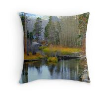"""Early Morning Colors"" Throw Pillow"