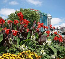 Colourful Flowerbed by gtiseb