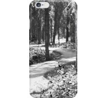 Curves In The Path iPhone Case/Skin